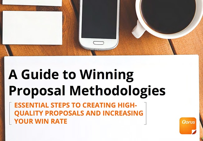 Guide to winning proposal methodologies cover